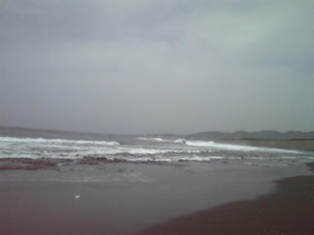 遠州灘は無理(>_<)
