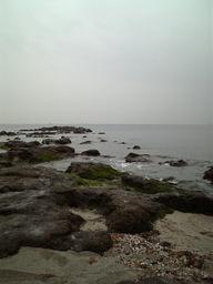 20118_005